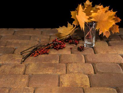 брусчатка тротуарная осень